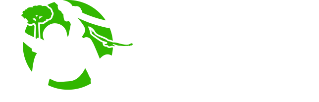 About Canopy Tours South Africa