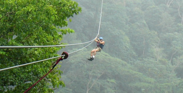 Gentleman Coming Down A Canopy Tours Zipline Over A Forest Canopy