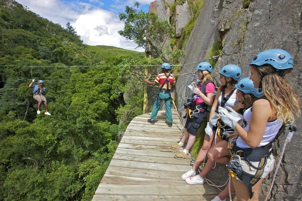 Cape Canopy Tour Opening | Canopy Tours South Africa