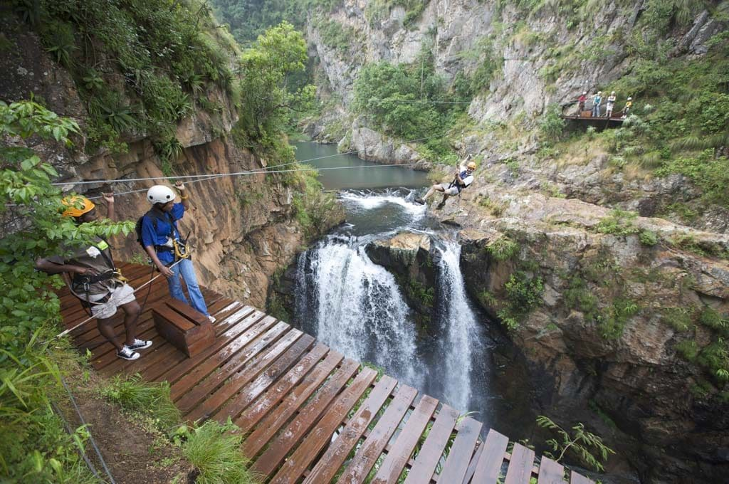 Canopy Tours South Africa Unforgettable Zipline Adventures