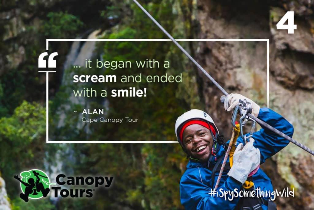 #4 Cape Canopy Tour