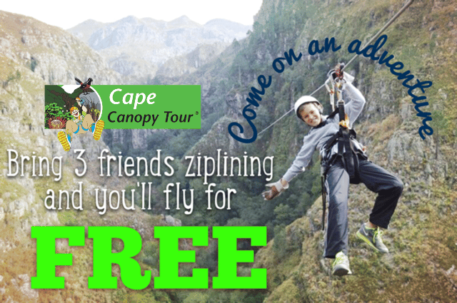 Zipline Through Winter With Our FAB4 Special