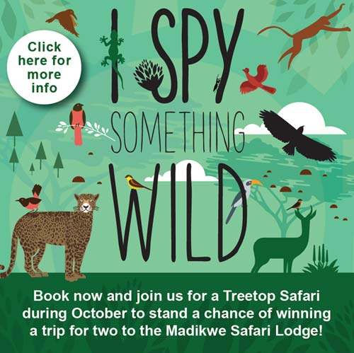 Play #iSpySomethingWild in October and WIN!