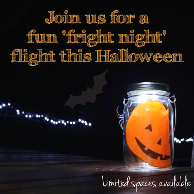 Night time zipline for Halloween!