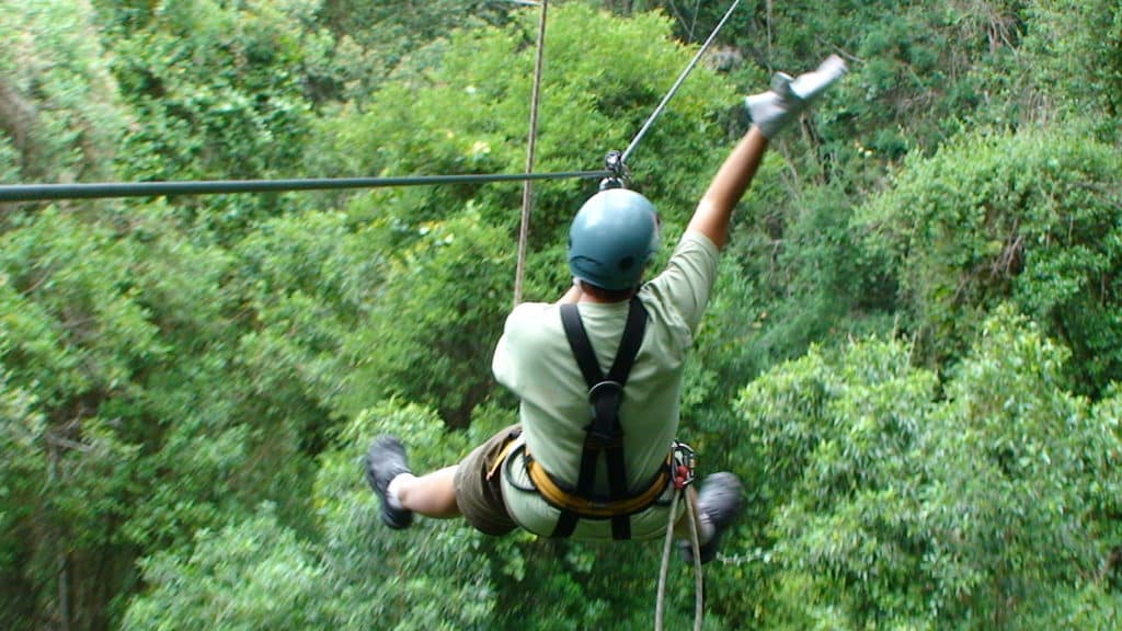 Frequent Fliers: explore Southern Africa by zipline