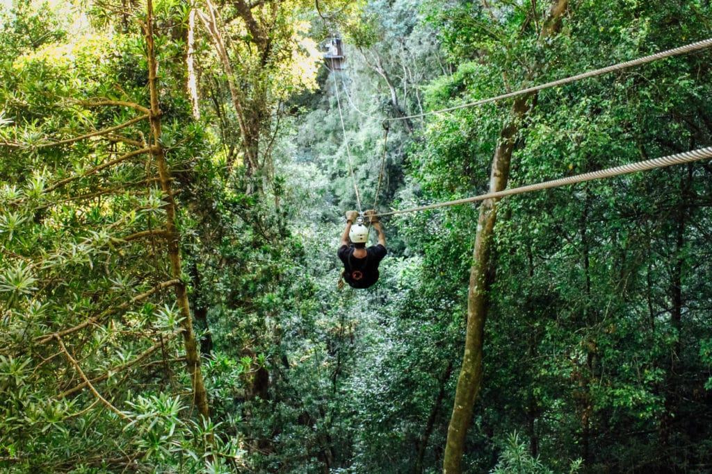 Which is the Best Canopy Tour for You?