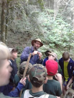 Forest Ecology Guided School Tour