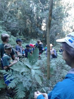 Guide Speaking And Guiding A School Excursion