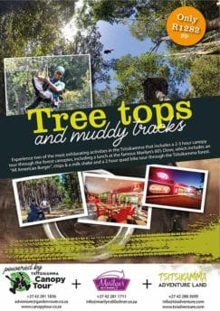 Tree Tops And Muddy Tracks Flyer